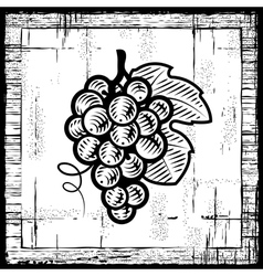Retro grapes bunch black and white vector image vector image