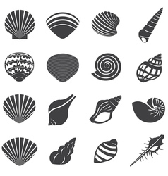 Sea shell flat mono icons set vector