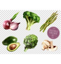 vegetables transparent set vector image