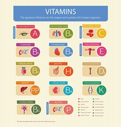Vitamins and their effect vector image vector image