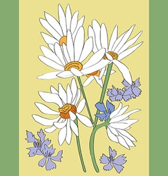 Daisies card vector
