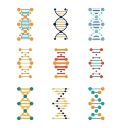 Dna genetics icons vector