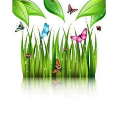 Flying butterflies by the grass vector
