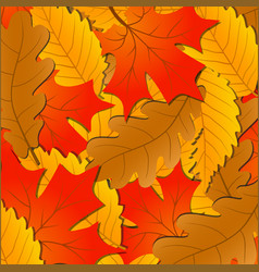 Autumn leaves background of the fallen leaves of vector