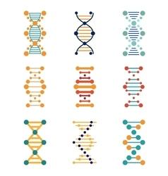 DNA genetics icons vector image