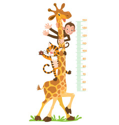 Giraffe monkey tiger meter wall or height chart vector