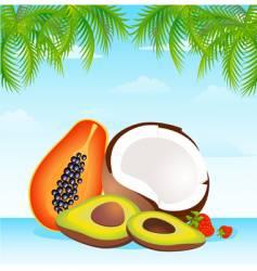 island fruit vector image vector image