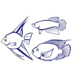 tropical fish set vector image