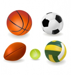 big set of sport balls vector image