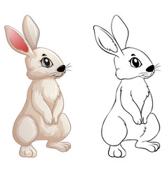 Animal doodle for little bunny vector