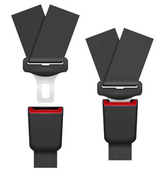 car seat belt for safety in case of accident vector image vector image