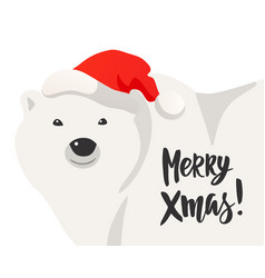 christmas card of white polar bear vector image
