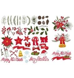 Christmas tree branchesflowersdecor kit vector image vector image