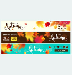 colorful autumn banner set fall sale background vector image vector image