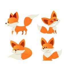 Fox- modern set of flat vector