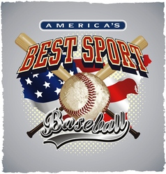 baseball americas sport vector image vector image