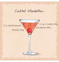 cocktail manhattan scetch vector image