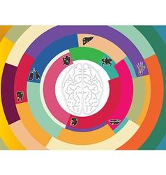 colourful circle vector image