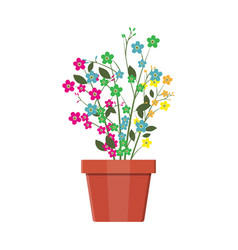 flower plant in flower pot decoration home plant vector image