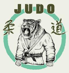 judoka tiger dressed in kimono vector image