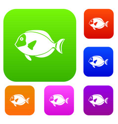 Surgeon fish set collection vector