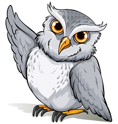A wise owl idiom vector