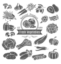 Monochrome vegetables icons vector image