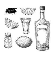 Tequila bottle salt shaker and shot glass with vector