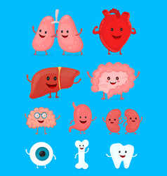 cute smiling happy human healthy strong organs set vector image