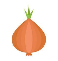 onion flat icon vegetable and diet vector image
