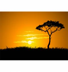 savana sunset vector image vector image