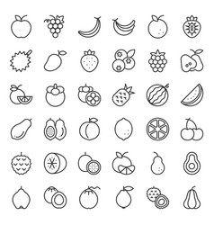 cute fruit outline icon set vector image