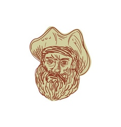 Pirate Head Beard Drawing vector image