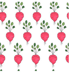 seamless pattern with radish vector image vector image
