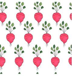 Seamless pattern with radish vector