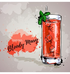 Hand drawn cocktail bloody mary vector