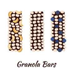 granola bars chocolate with grain berries nuts vector image
