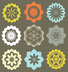 Floral esoteric elements vector