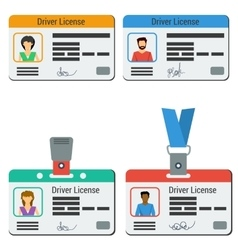Four colored drivers license vector image vector image