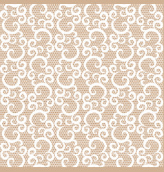 seamless white lace vector image vector image