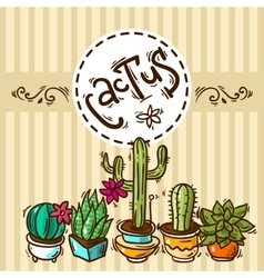 Cacti and succulents vector