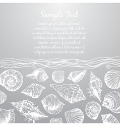 Hand drawn pattern with various seashells and vector