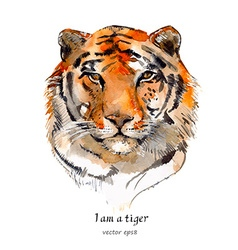 Portrait of a tiger watercolor vector
