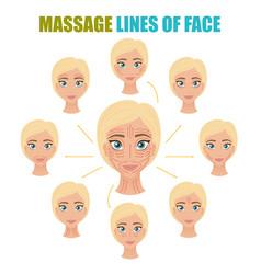 face massage lines set vector image
