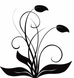 Floral flourish vector