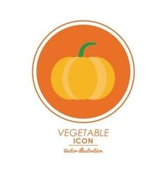 Pumpkin icon healthy food design graphic vector