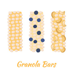 Granola bars caramel with grain berries nuts vector