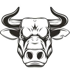 ferocious bull head vector image