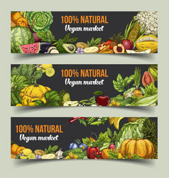 Fruits and vegetables on isolated banners vector