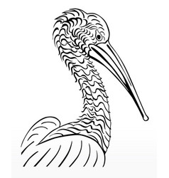 Pelican bird sign lo vector